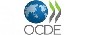 OECD 300x125 La OCDE aprueba el intercambio automático de información contra el fraude fiscal